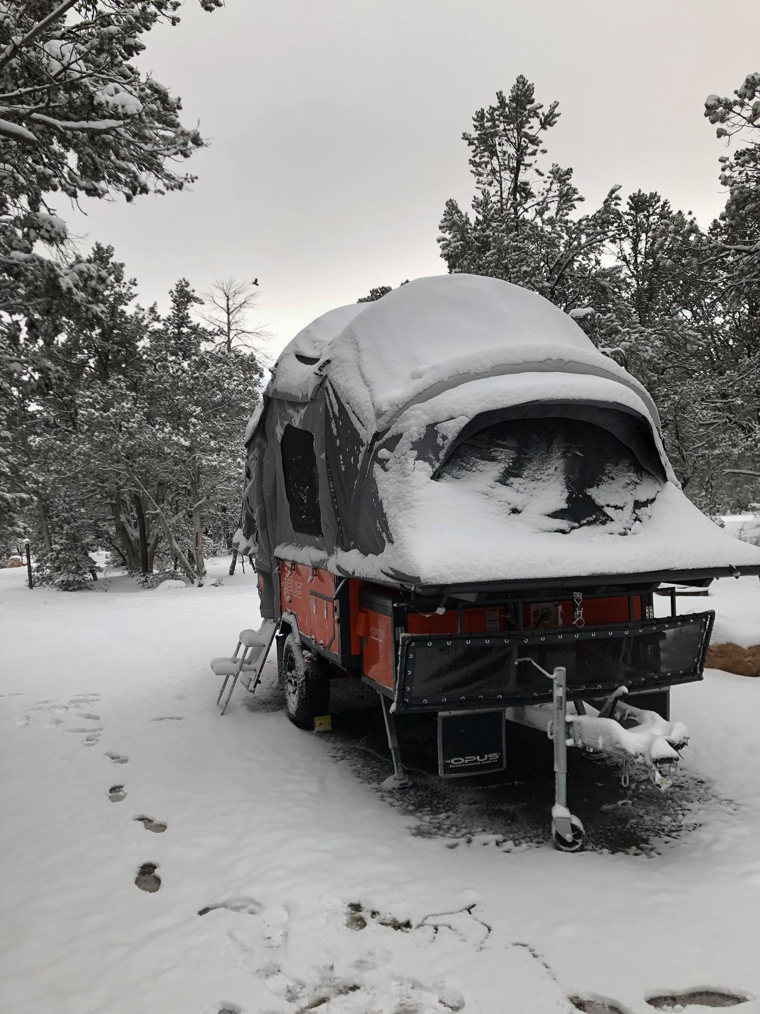 opus_snow